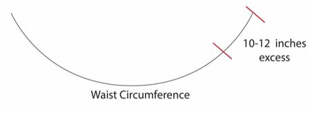 waist curve1